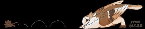 owlcat-sig.png