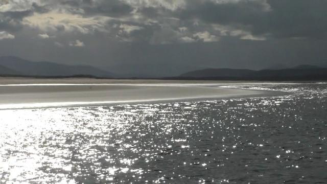 Moray-4-Still023