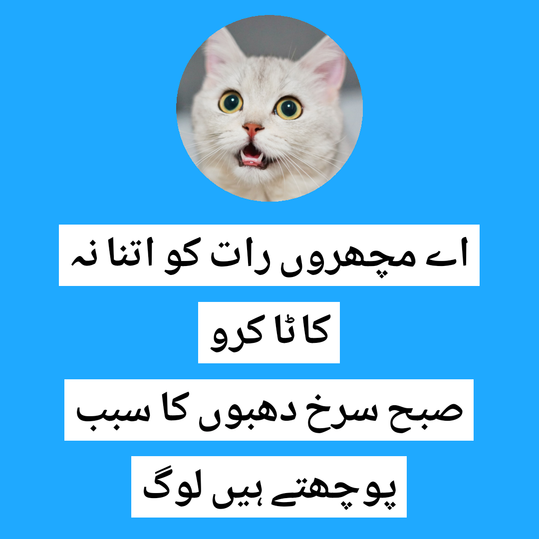 funny poetry in urdu,funny shayari in urdu,funny status in urdu,funny poetry,