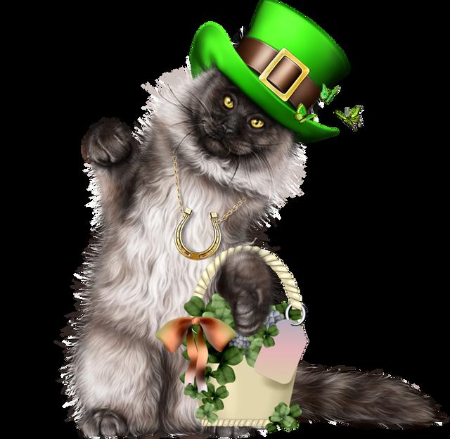 Leprechaun-Cat-With-Beer-06.png