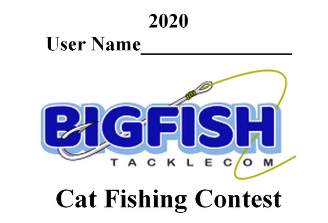 2020-CATFISH
