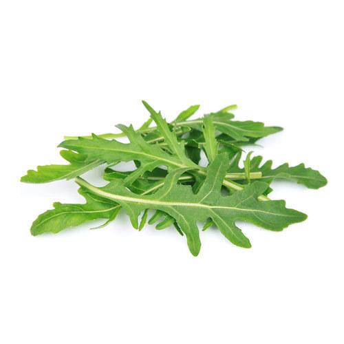 https://i.ibb.co/YtjSqsx/fresh-arugula-leaf-500x500.jpg