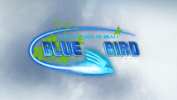 Browse to the homepage of BlueBird-HD
