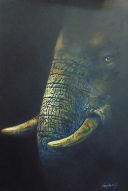 9-Elefante-rostro-tecnica-Mixta