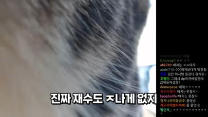 DP-0-48-screenshot