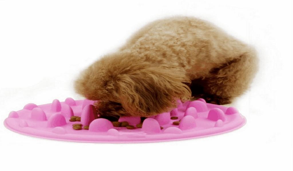 Celluloid & Vinyl Pet Food News