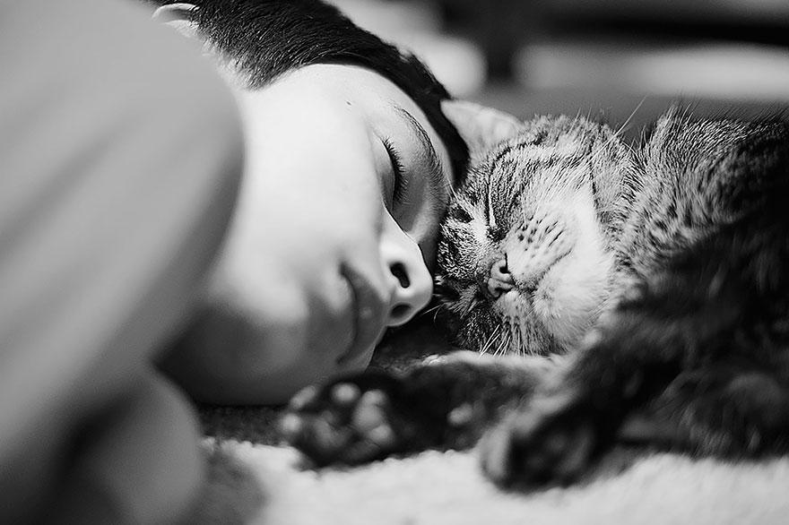Таинственная кошачья жизнь в чёрно-белых фотографиях-102