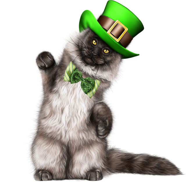 Leprechaun-Cat-With-Beer-01.png
