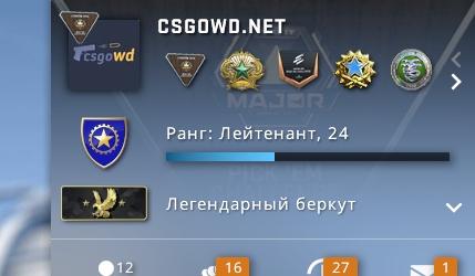CS:GO - БЕРКУТ  Инвентарь 7500 Руб