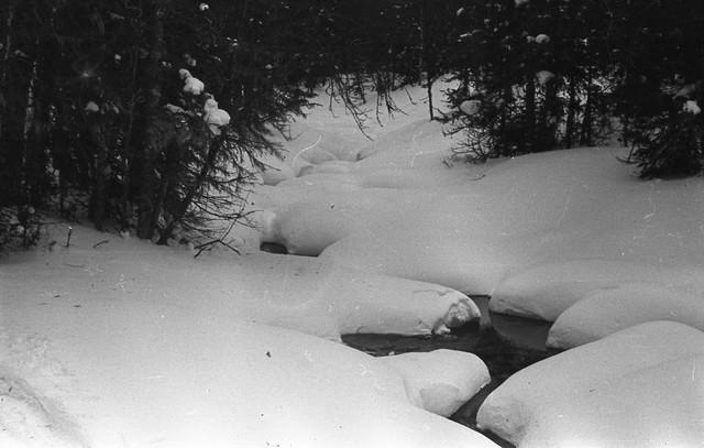 Dyatlov pass 1959 search 51