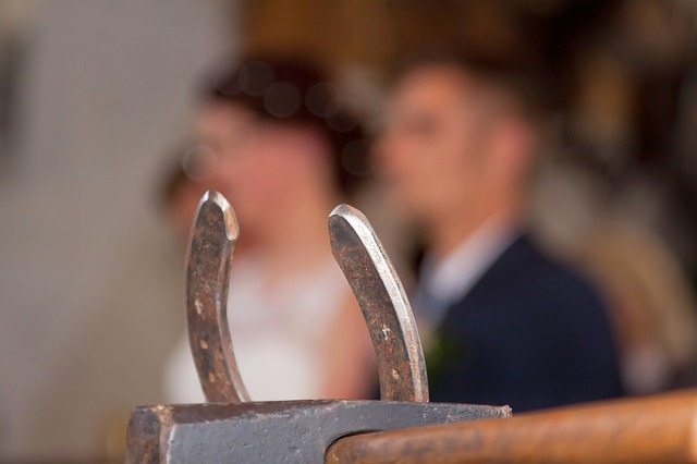 An image of a horseshoe present at a wedding.