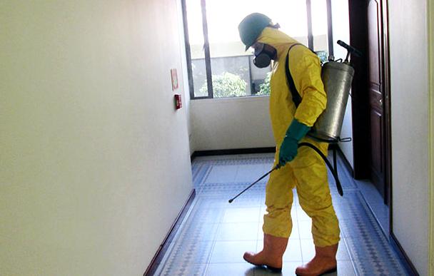 fumigacion-control-de-plagas