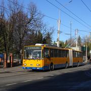 IMG-7561