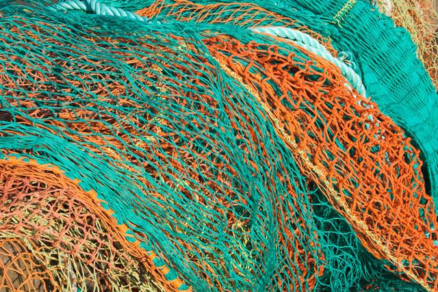 Canva-Fishing-Nets.jpg