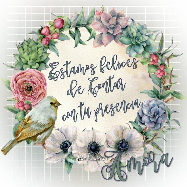 amora-rf37