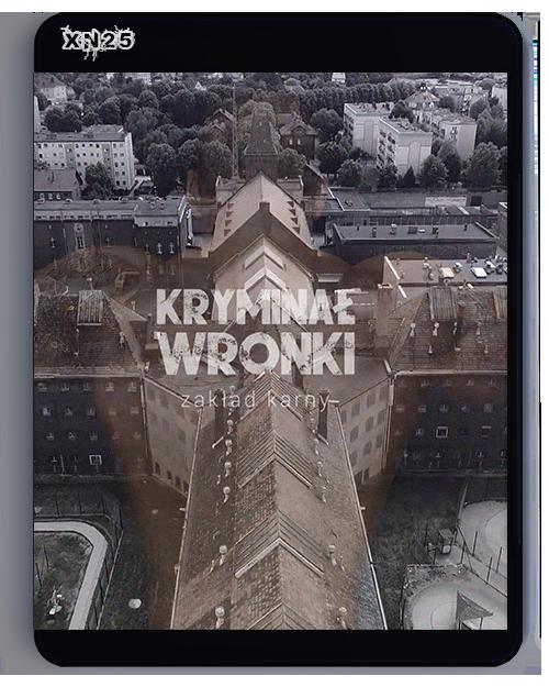 Wronki Kryminalne - Zakład Karny (2019) [Sezon 1] PL.1080p.WEB-DL.H264.AAC-XN25 / Produkcja Polska
