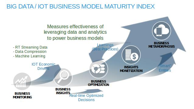 Figure 5: Big Data / IOT Business Model Maturity IndexMaturity Index