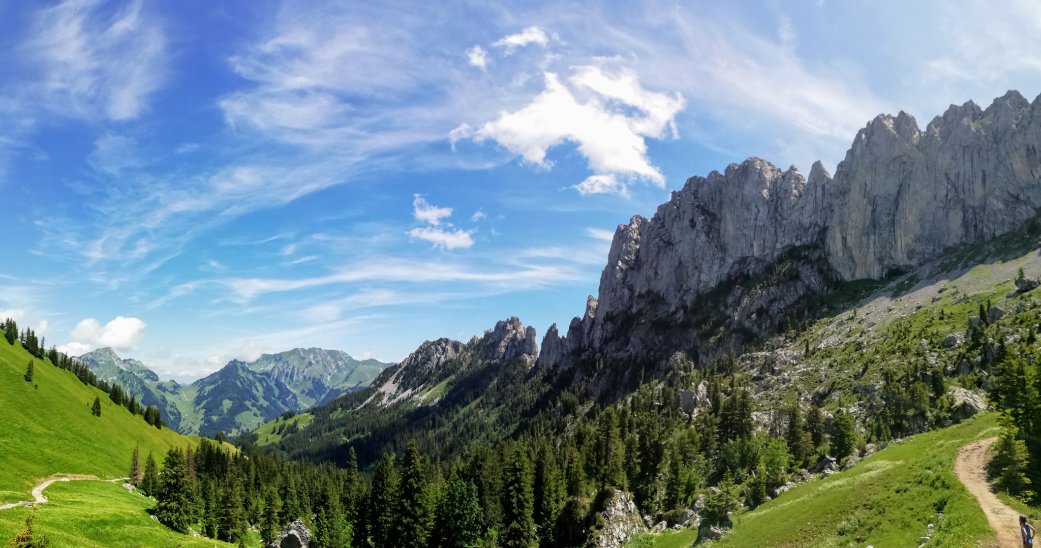 Gastlosen Tour - great scenery and flora in the Swiss Pre-Alps