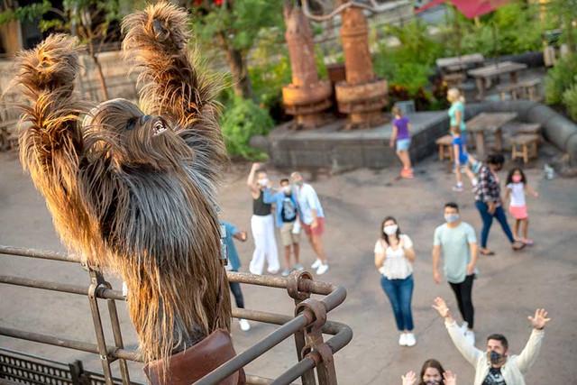 Fermeture des Parcs Disney du monde pendant la COVID-19 (Californie et Typhoon Lagoon fermés) - Page 28 152