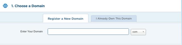 3-Choose-a-Domain