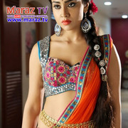 Shriya-Saran-Hot-and-Sexy-Spicy-Stills-From-Pavithra-Movie-VP-27