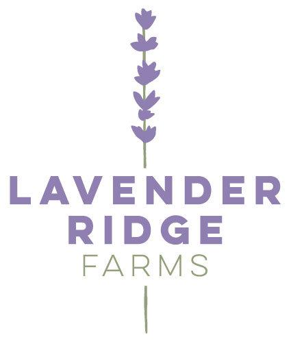 lavenderfarms