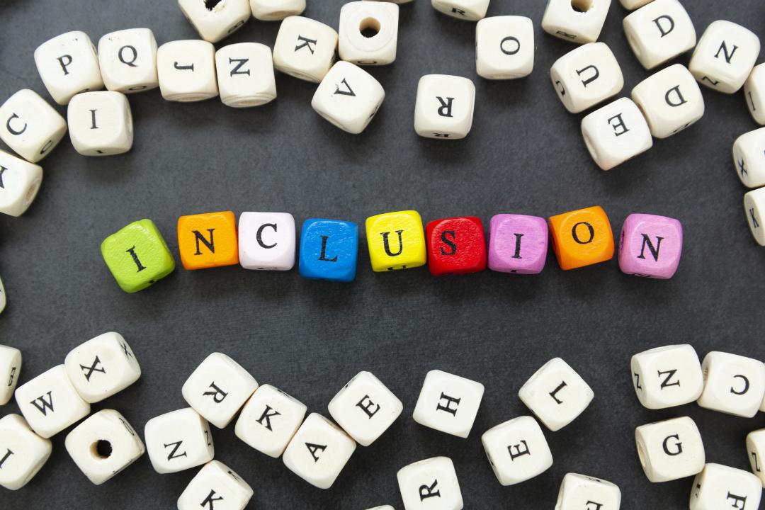 https://i.ibb.co/Zhd6BQF/inclusion