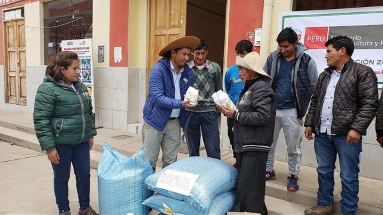 Bajas temperaturas y falta de agua afectan cultivos en Junín y Cusco