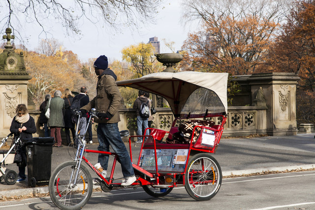 Pedicab-at-Central-Park