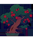 pomegranate-mini.png