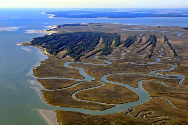 Ted-Turner-St-Phillips-Island.jpg