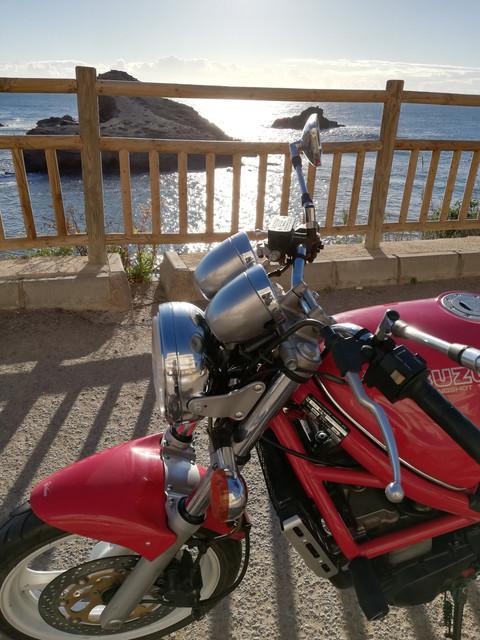Bandit roja en Los Alcázares, la zona del Mar Menor - Página 2 IMG-20190111-100929