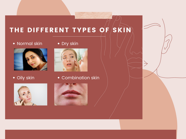 The-different-types-of-skin