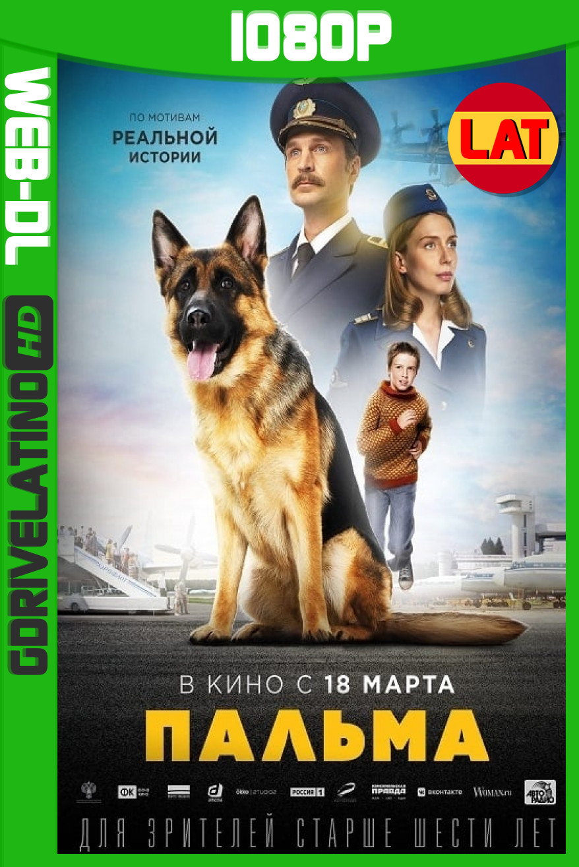 Palma, Mi Amiga (2021) WEBDL 1080P Latino-Ruso