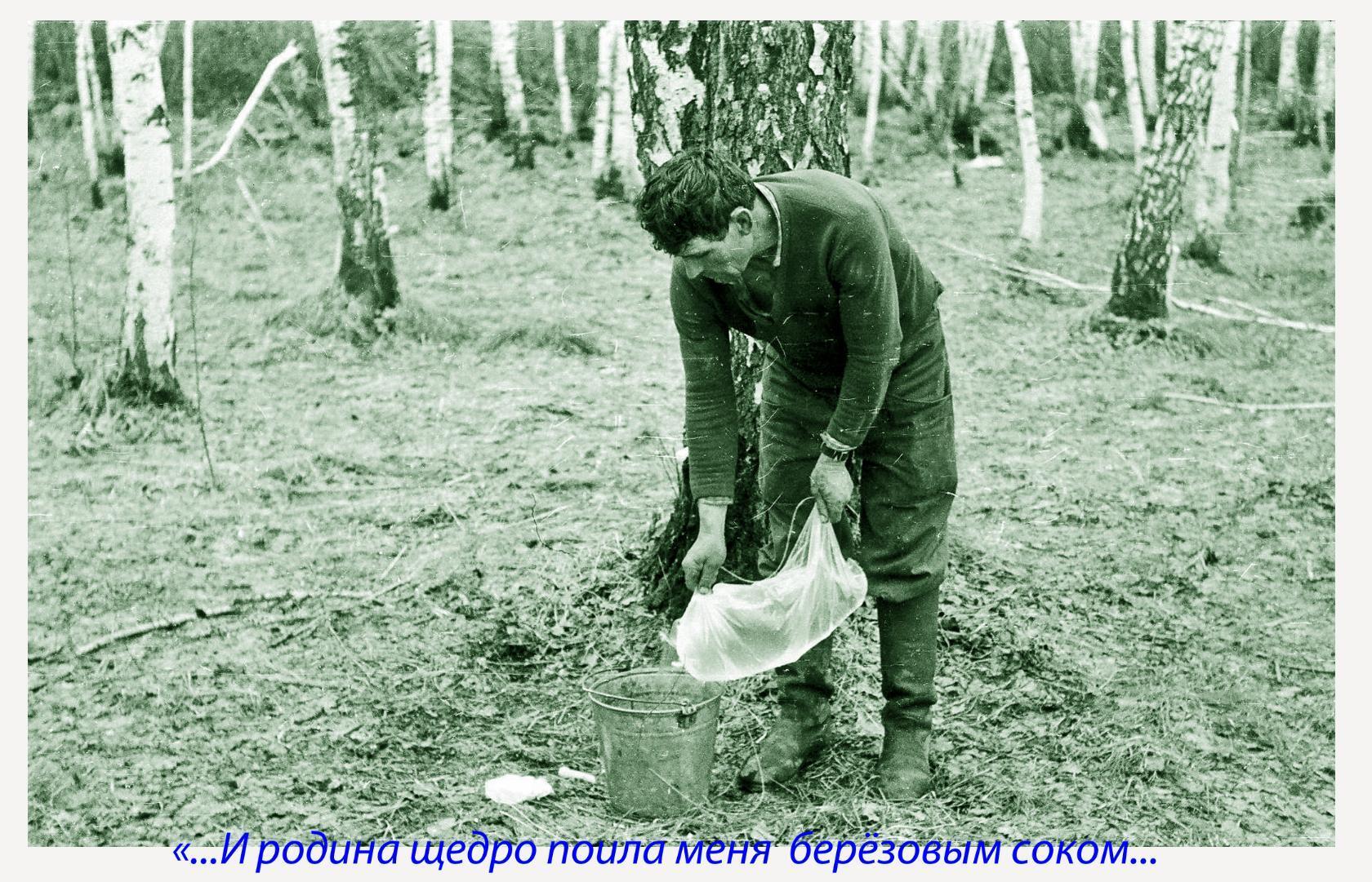 От щедрот Алтайских