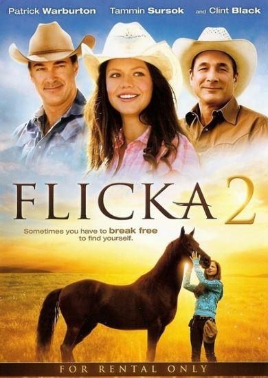 Flicka 2 (2010) PL.BRRip.XviD-GR4PE | Lektor PL