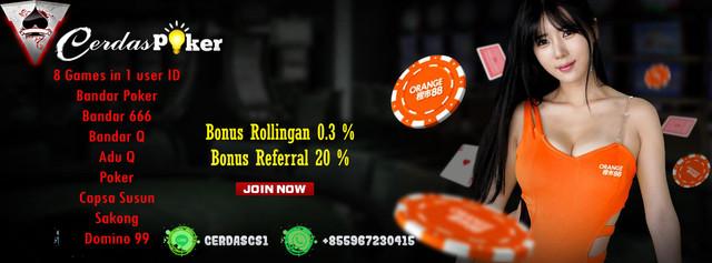 [Image: poker-cerdas-banner.jpg]