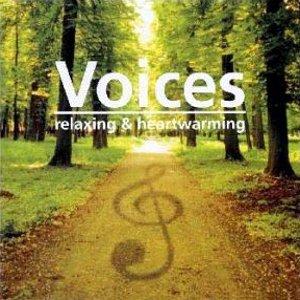 Compilations incluant des chansons de Libera Voices-300