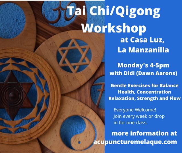 Tai-Chi-Qigong-Workshop