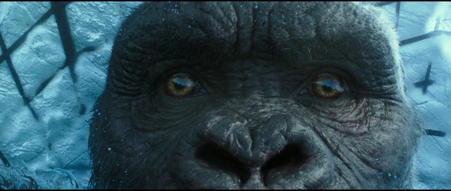 Godzilla-vs-Kong-2021-575
