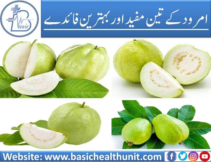 3 Best And Very Useful Benefits Of Guava Fruits You Need To Know