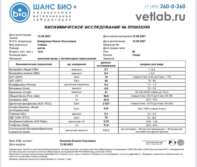 IMG-8808