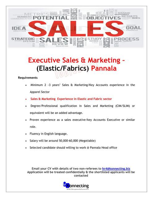 2172c-Executive-Sales-Marketingo-Pannalao1