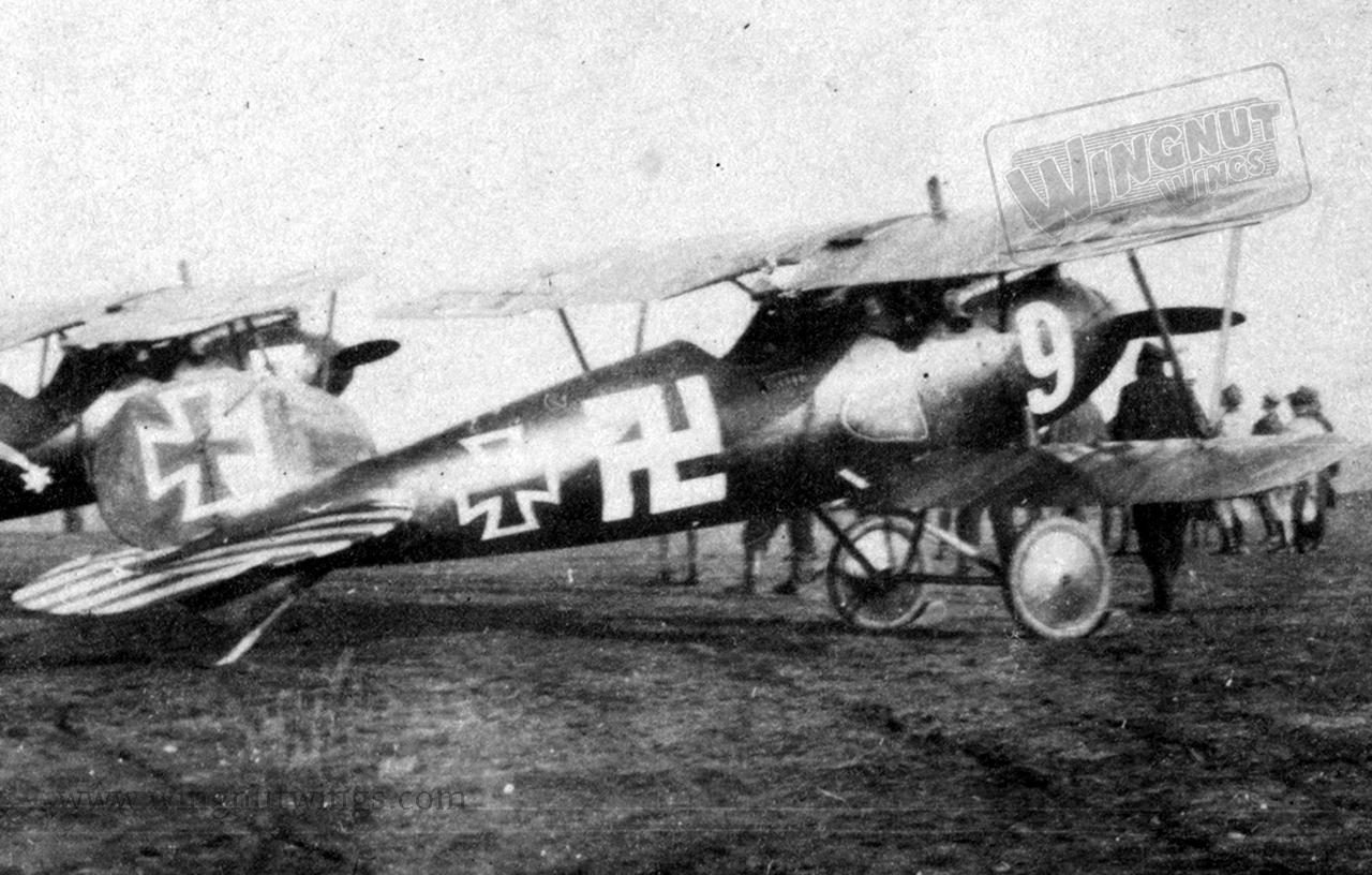 Albatros-D-Va-White-9-Jasta-37-AL0240-02