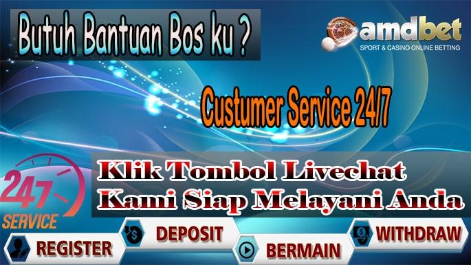 Custumer Service