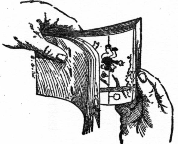 Folioscopios