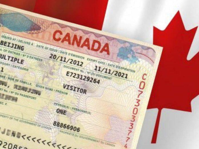 Как получить визу в канаду фрилансеру зарубежный фриланс freelancer com