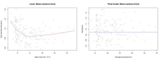limma voom Mean-variance trend plot: x-axis?