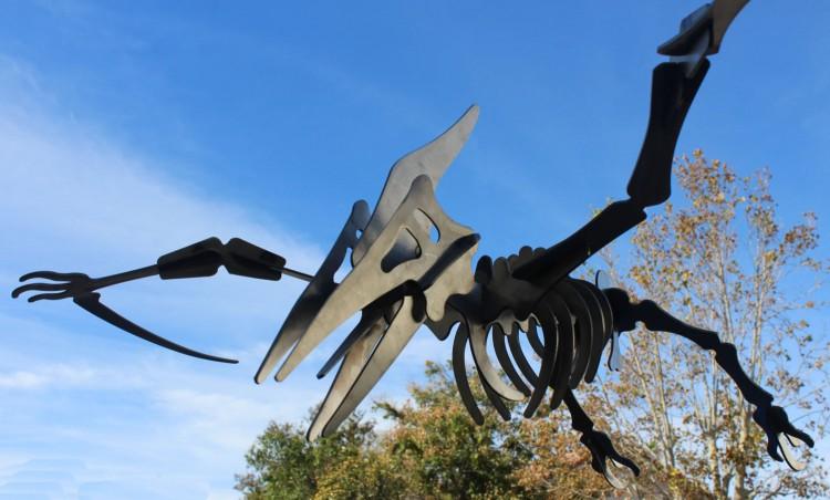 Pterodactyl 3D metal art sculpture 1