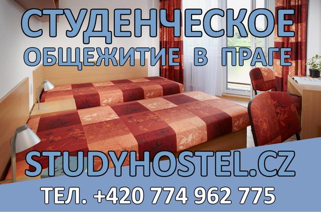 Studyhostel-4